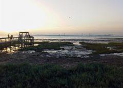 """3R pide """"iniciar el plan municipal contra el cambio climático"""""""